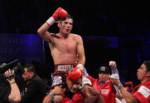 mauricio herrera boxer - 600×413