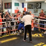Mayweather Jr. Public Workout