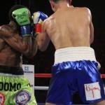 Golovkin vs Wade. Photos Sumio Yamada