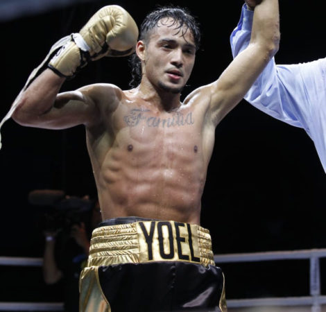 WBA will promote 2020 Olympic boxing project for Venezuela