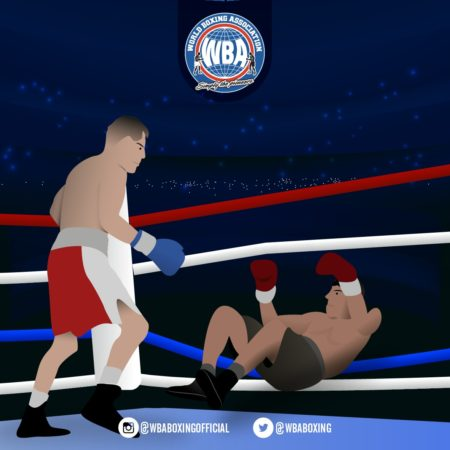What to do when one of the boxers falls out of the ring?