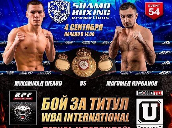 Shekhov and Kurvanov in a duel of undefeated for the WBA-International belt this Friday