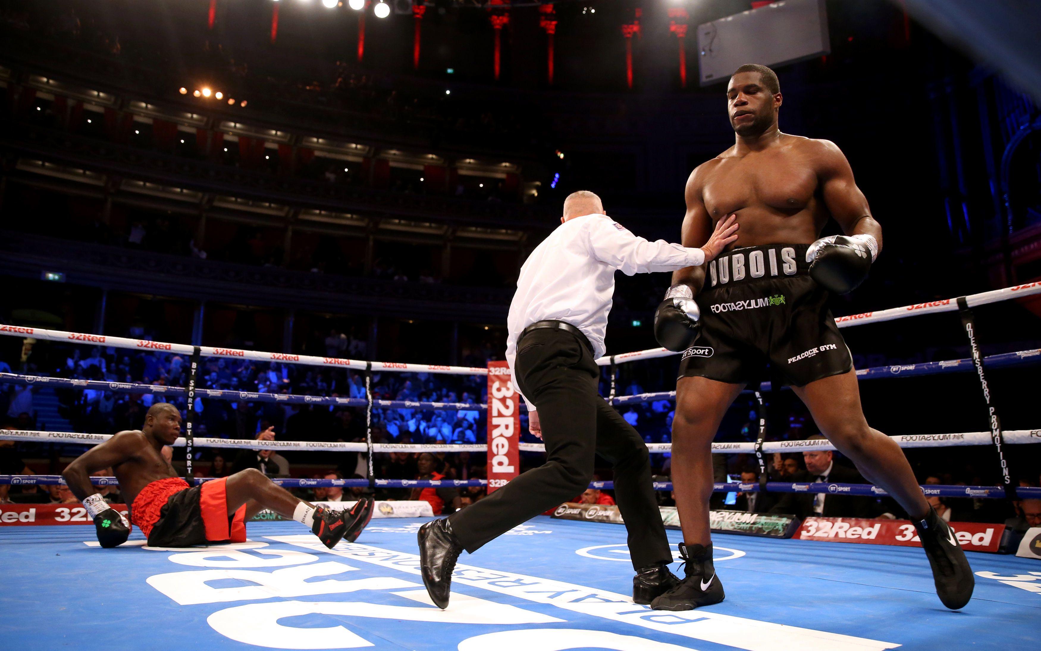 Dubois-Dinu por el título interino de peso pesado este sábado